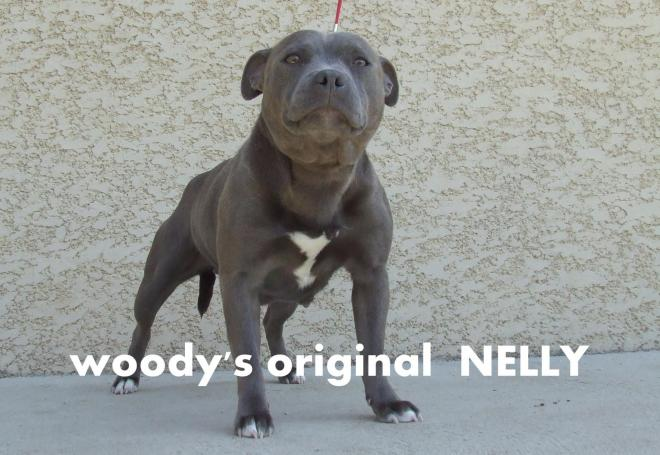 Nelly 004